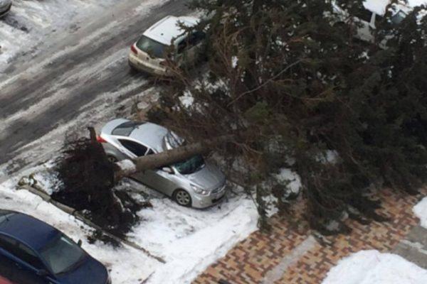 На Ставрополье ураган