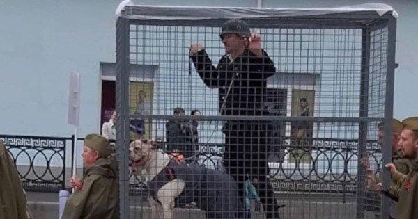 клетка с «немцем» и собаками